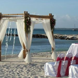 Divi Phoenix Beach (Palm Beach)